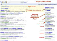 Paid Search results after Google cookies cleared